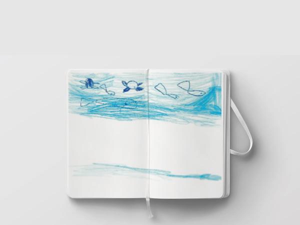 disegno-acqua